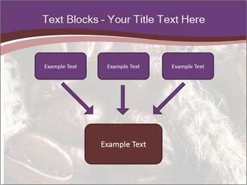 0000079984 PowerPoint Template - Slide 70