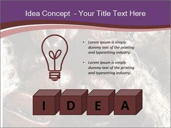 0000079984 PowerPoint Template - Slide 80