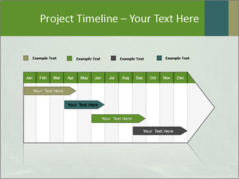 0000079991 PowerPoint Template - Slide 25