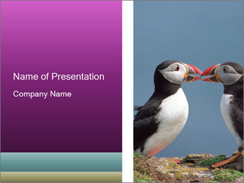 0000079994 PowerPoint Template - Slide 1
