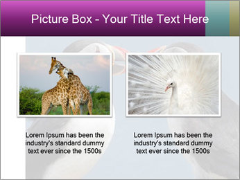 0000079994 PowerPoint Template - Slide 18