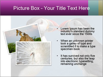 0000079994 PowerPoint Template - Slide 20