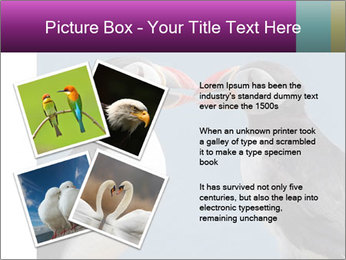 0000079994 PowerPoint Template - Slide 23