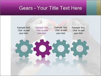 0000079994 PowerPoint Template - Slide 48