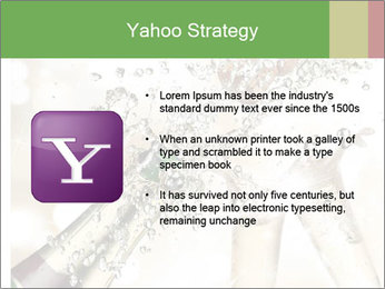 0000079997 PowerPoint Templates - Slide 11