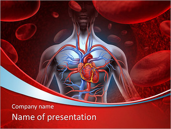 The internal Organs PowerPoint Template