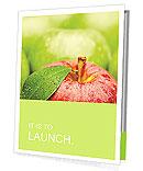 Ripe green apple Presentation Folder