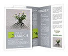 Plants emerging through hard asphalt Brochure Templates