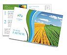 Sown field Postcard Template