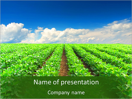 Cultivation of agricultural crops powerpoint template cultivation of agricultural crops powerpoint templates toneelgroepblik Gallery