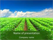 La culture de plantes agricoles Modèles des présentations  PowerPoint