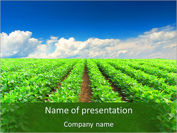 Cultivation of agricultural crops PowerPoint Template - Slide 1