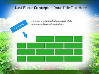 Cultivation of agricultural crops PowerPoint Template - Slide 26