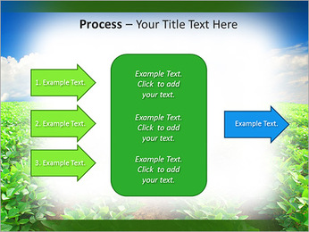 Cultivation of agricultural crops PowerPoint Template - Slide 65