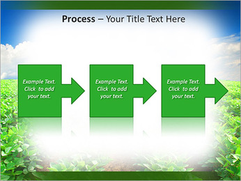 Cultivation of agricultural crops PowerPoint Template - Slide 68