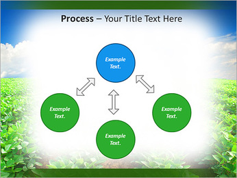Cultivation of agricultural crops PowerPoint Template - Slide 71
