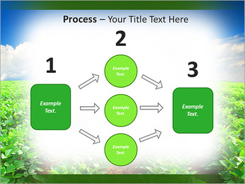 Cultivation of agricultural crops PowerPoint Template - Slide 72