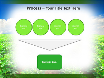 Cultivation of agricultural crops PowerPoint Template - Slide 73