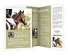 The rider on the horse Brochure Templates