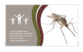 Mosquito Business Card Template