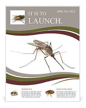 Mosquito flyer template design id 0000008370 smiletemplates mosquito flyer templates toneelgroepblik Choice Image