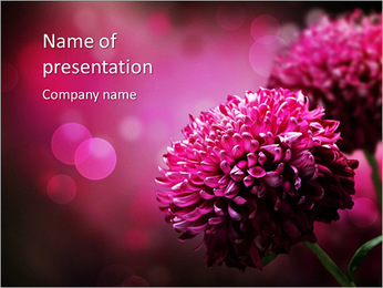 Pink flowers PowerPoint Template
