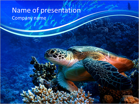 turtle in the ocean powerpoint template backgrounds google slides