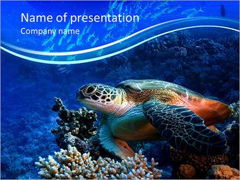 Turtle in the ocean PowerPoint Template