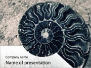 Lumache Skeleton I pattern delle presentazioni del PowerPoint