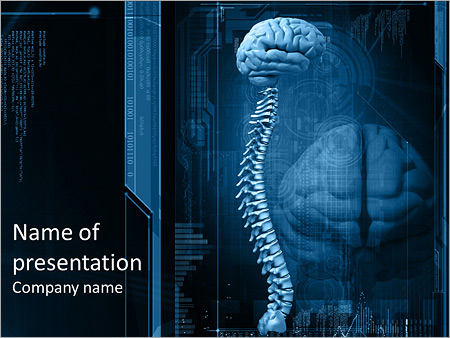 Spinal Cord And Brain Powerpoint Template Backgrounds Google