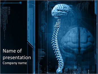 Spinal cord and brain PowerPoint Template