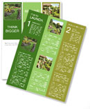 The perfect lawn Newsletter Template