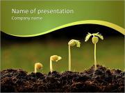 Evolution des plantes Modèles des présentations  PowerPoint