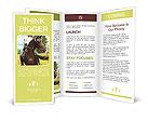 Beautiful rider rides a horse Brochure Templates