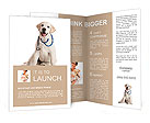 Dog posing at a reception vet Brochure Templates