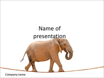 Elephant walking on a rope PowerPoint Template