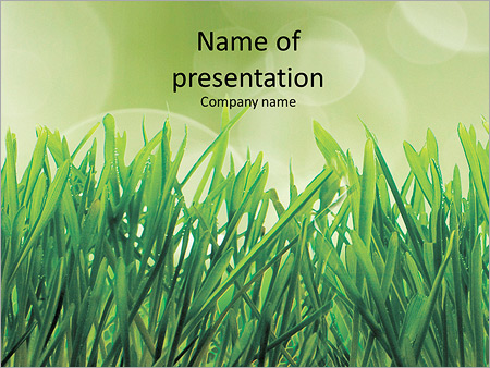 A Beautiful Lawn Grass Powerpoint Template Backgrounds Id