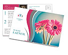 Beautiful pink flower Postcard Templates