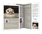 Small gray kitten lying on the floor Brochure Templates