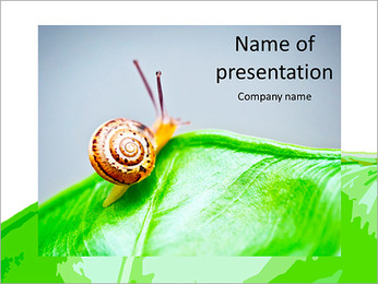 Little snail crawling on a green leaf PowerPoint Template