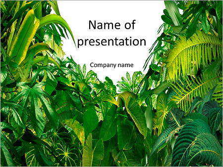 green tropical jungle powerpoint template backgrounds google