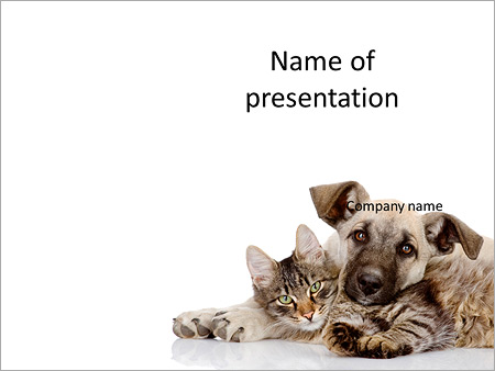 friendship of cat and dog powerpoint template & backgrounds id, Modern powerpoint