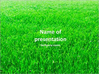 Field of green grass PowerPoint Template