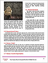 0000080002 Word Templates - Page 4