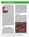 0000080003 Word Templates - Page 3