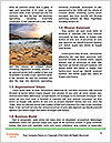 0000080003 Word Templates - Page 4