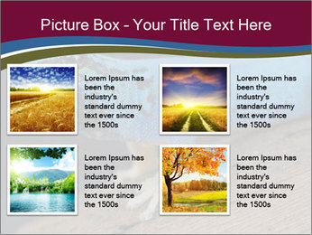 0000080007 PowerPoint Template - Slide 14