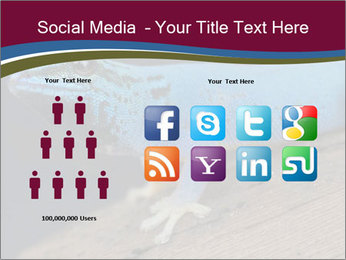 0000080007 PowerPoint Template - Slide 5