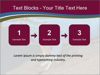 0000080007 PowerPoint Template - Slide 71