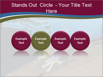 0000080007 PowerPoint Template - Slide 76